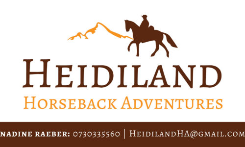 activities-heidiland-horse-riding